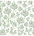 seamless pattern with gypsophila flowers in vector image