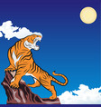 tiger 0006 on the rock vector image