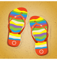 Beach slippers on sand vector image