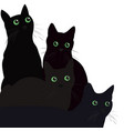 Black cats with green eyes over white background