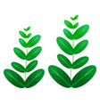green leaf plant element decor isolated for game vector image