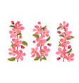 pink cherry blossom branches set isolated on white vector image vector image