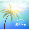 summer holidays sunny background with tropical vector image vector image
