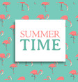 summer time card pink flamingo background vector image