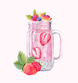watercolor smoothie vector image vector image