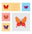 flat monarch set of violet wing moth danaus vector image