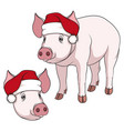 color of a pig in a christmas hat vector image