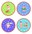 holiday new year pig colored round images vector image vector image