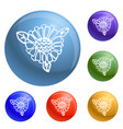 wild calendula icons set vector image vector image