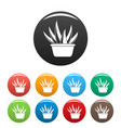 aloe vera pot icons set color vector image vector image