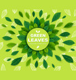 background with green leaves in a circle template vector image vector image