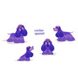 cocker spaniel vector image vector image