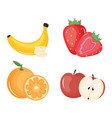 group tropical and fresh fruits vector image vector image