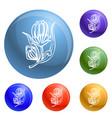 medicine calendula icons set vector image