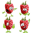 raspberry cartoon vector image