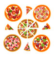set of pizza with different ingredients vector image