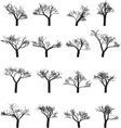 Set of sixteen silhouettes of trees vector image vector image