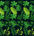 tropical leaves foliage frond plant botanical dark vector image vector image