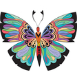 Colored butterflies with patterns vector image vector image