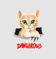 cute cat funny kitten in ripped paper vector image vector image