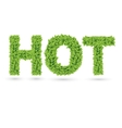 Hot text of green leaves vector image vector image