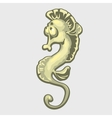 Isolated image of a sea horse vector image vector image