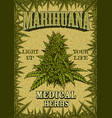 marihuana colour poster vector image