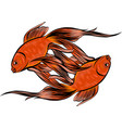 red drum redfish vector image vector image