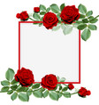 red hot roses bouquet on a frame vector image vector image