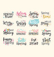 spring time lettering text greeting card special vector image vector image