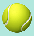 Tennis ball on green vector image vector image