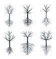 trees with roots outline plants vector image vector image