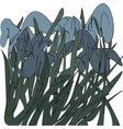 blue irises in the grass abstract vector image vector image