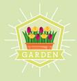 garden potted flowers decoration emblem image vector image