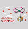 quadcopter with a grocery basket vector image vector image