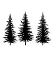 set christmas trees vector image vector image