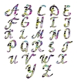 Alphabet letters Hand drawn vector image