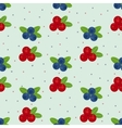 Cranberry and blueberry seamless pattern 1 vector image