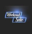 neon banner realistic weekend sale neon banner vector image