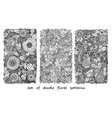 Set of doodle pattern with flowers and paisley vector image vector image