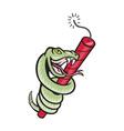 snake rattle dynamite EPS10 vector image vector image