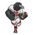 black crow - american football mascot character vector image vector image