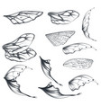 collection light wings for design vector image vector image