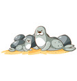 gray seals on white background vector image