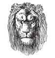 lion head is a prospectus of dr schuberts vector image vector image