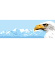 Mountains Eagle vector image vector image