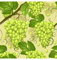 seamless texture of grapes vector image vector image