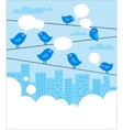 social network background with blue birds vector image