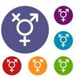 transgender sign icons set vector image