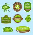 Bundle of labels for organic bio natural foods vector image